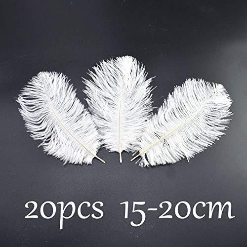 DFYYQ 20pcs / Lote Blanco Avestruz Ganso Plumas de Ganso para artesanías DIY Faisán Gallo Plumas de Gallo para la Ropa de joyería Plumas caseras Decoración del Partido (Color : Ostrich Feather)