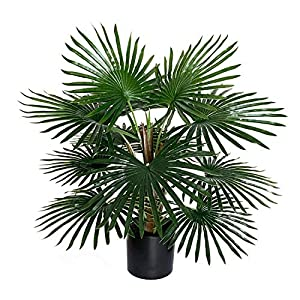 Silk Flower Arrangements BESAMENATURE 22-inch Artificial Windmill Palm Tree - Faux Palm Tree Used for Home Office Decoration