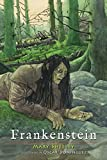 Frankenstein (Clydesdale Classics) (English Edition)
