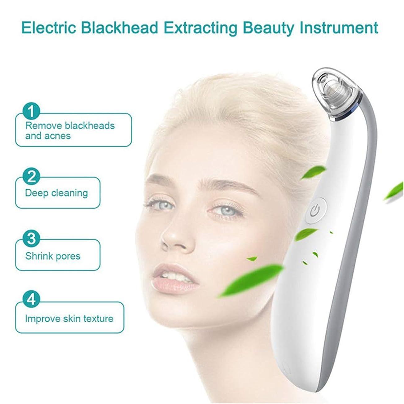 翻訳メドレーフェッチ気孔の真空の深くきれいな、皮膚健康のための電気顔の安定した吸引のスキンケア用具4取り替え可能な吸引の頭部USB再充電可能