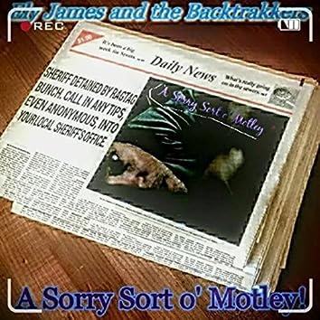A Sorry Sort O' Motley!
