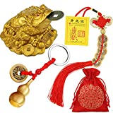 3 Pieces Feng Shui Money Frog Chinese Knot Lucky Coins Feng Shui Brass Wu Lou with Coins Keychain for Longevity Travel Safely Wealth Success and Good Luck with 1 Blessing Card and 1 Red Blessing Bag