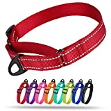 Collardirect Reflective Martingale Dog Collar Nylon Training Collars for Small Medium Large Dogs Puppy Pink Orange Green (L, Neck Size 16'-24', Red)
