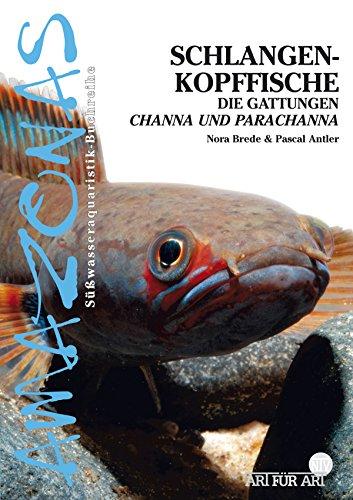 Schlangenkopffische: Die Gattungen Channa und Parachanna (Art für Art)