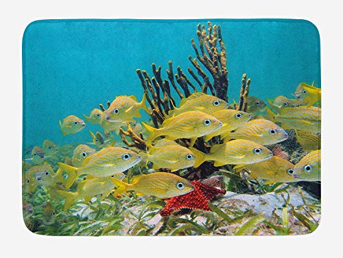RAINNY Fish Bath Mat, Shoal of French Grunt Tropical Fish with Starfish Gorgon and Shell in CaribbeanImage, Plush Bathroom Decor Mat with Non Slip Backing, 23.6 W X 15.7 W Inches, Multicolor