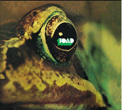 Toad -Digi-
