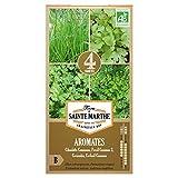 Semillas aromáticas para cocina ecológica