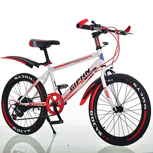 Bicicleta De Montaña Bicicleta con Espesor Absorción De Choque Neumático Marco Hecho...