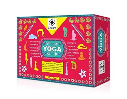 Chakra Yoga Naturali e Mano Bastoncini di incenso preconfezionati - 12 Profumi per 12 asana - 120 Sticks a Base di Oli Essenziali Naturali- Crea un'atmosfera Spirituale per Lo Yoga e Meditazione