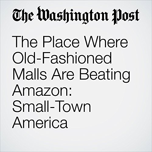 The Place Where Old-Fashioned Malls Are Beating Amazon: Small-Town America copertina