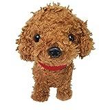Walking Coweibadies toy poodle 49056