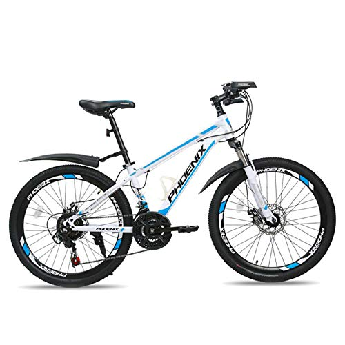 FUFU 24 Inch Children's Bicycle, 21-speed Adjustable, Variable Speed Bicycles for Men and Women, Suitable for 10-16 Years Old (Color : Blue)