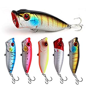 ZWMING Topwater Fishing Lure,Bass Lures Popper Fishing Baits,3D Lifelike Eyes,Freshwater Saltwater Fishing Hard Lures with Tackle Box (H-5pcs)