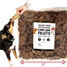 Dog Chits Lamb or Bison Lung Fillets for Dogs - Dog and Puppy Chews, Huge Bag, Made in USA, All-Natural Treats, Crispy not Crumbly, Large and Small Dogs, Flavor Dogs Love