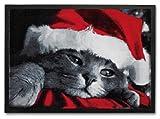 Trendstern® Trendprodukteshop Fußmatte Weihnachten Weihnachtskatze Türmatte Christmas Fußabtreter Vorleger