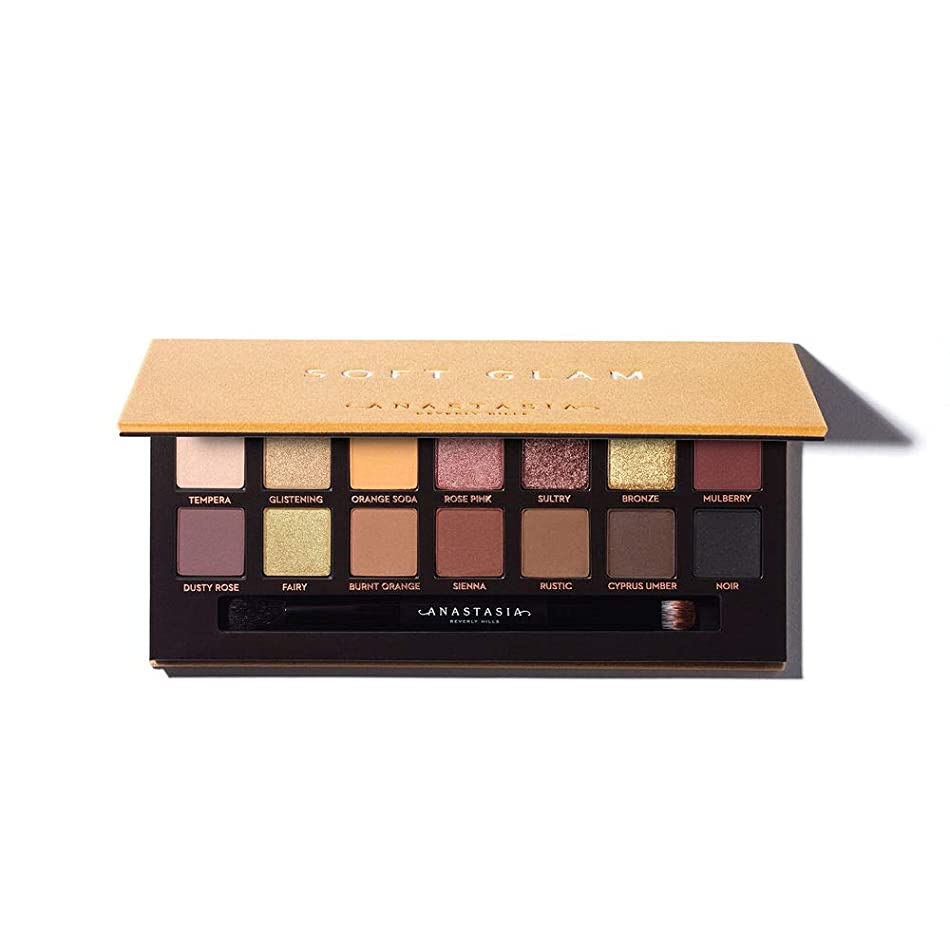 縞模様の君主ブリッジANASTASIA BEVERLY HILLS Soft Glam Eyeshadow Palette
