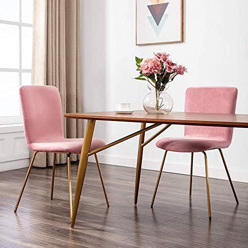 Art Leon Velvet Chairs, Mid Century Upholstered Kitchen Dining Chairs with Gold Metal Legs, Set of 2, Pink