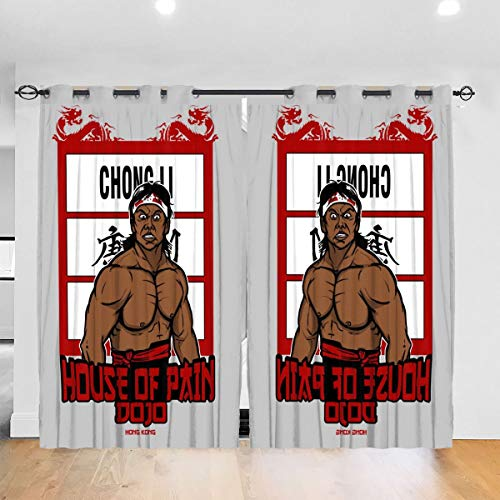 HONGYANW Hongyang - Cortinas Opacas Personalizadas para Ventana Chong Li House of Pain Bloodsport con Ojales térmicos aislados para oscurecer la habitación, Sala de Estar, 52 x 72 Pulgadas, 2 Paneles