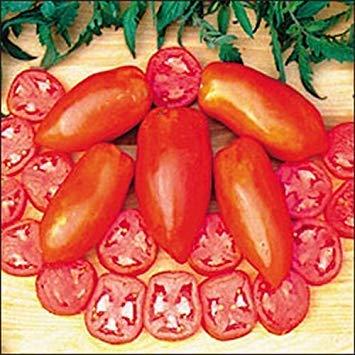 PLAT FIRM Germination Les graines PLATFIRM-Long Tom Tomate Heirloom Seeds 20 Lune Gardens Simplement Grown Magnifiquement