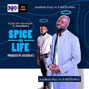 Spice My Life (feat. JesseBeatz)