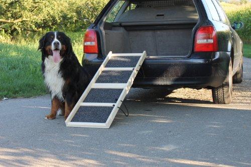 Easy-Hopper Hunderampe Komfort Natur mit Rasenbelag