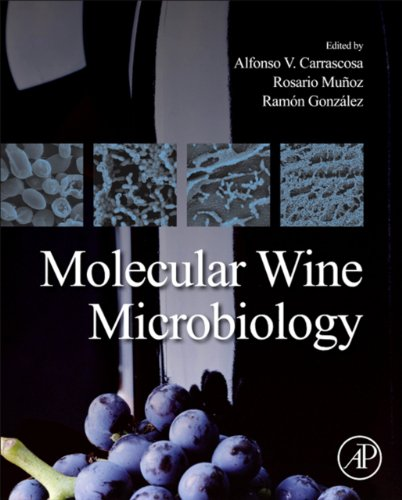 Molecular Wine Microbiology (English Edition)