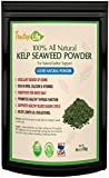 Kelp Sea Moss Powder (Ascophyllum Nodosum)| Thyroid Support Iodine Supplement | Dried Atlantic Seaweed Supplement for Meal, Face Mask, Hormone Balance, Weight Loss & Energy | Made in USA