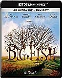 ビッグ・フィッシュ 4K ULTRA HD & ブルーレイセット[Ultra HD Blu-ray]