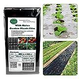 Watermelon Verduras de jardín de lámina negra para plantas agrícolas, lámina de plástico perforada, lámina de polietileno para jardín, barrera de alto rendimiento (95 cm x 10 m, 5 agujeros, 0,03 mm)