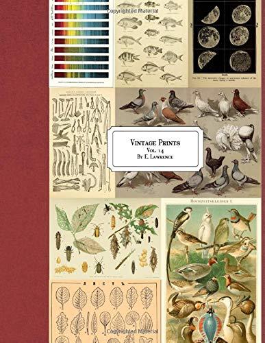 Vintage Prints: Vol. 14