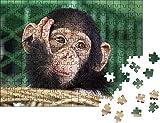 NHJUIJ Rompecabezas Puzzle 1000 Mini Puzzles de Cara de chimpancé difusa Art Famly educativos para niños Amigo Familiar Adecuado
