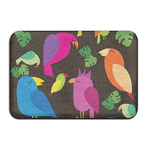 Novelcustom Colorful Birds Indoor Outdoor Doormats Super Absorbs Mud Dirt Easy Clean Cute Cat Floor Rug Door Mats 15.7\