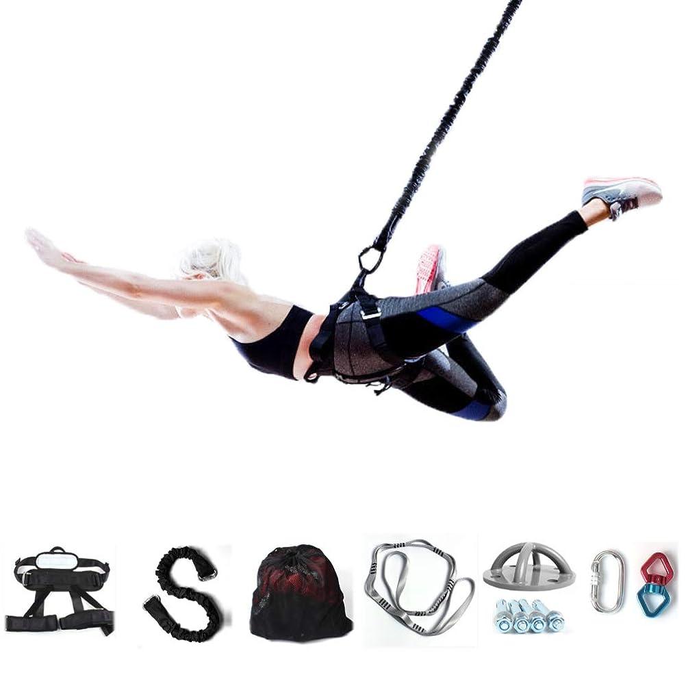 消費する手つかずの模索ロープ抵抗 サスペンションレジスタンスバンド空中ヨガストレッチベルトセットトレーニングで重量抵抗トレーニングシステムホームジム