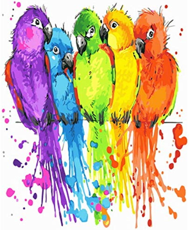 CZYYOU DIY, Ölgemälde Durch Zahlen Malen Nach Zahl Für Den Bunten Papagei Der Hauptdekorölabbildung, Ohne Rahmen, 50x60cm B07Q5G63D7 | Verkauf Online-Shop