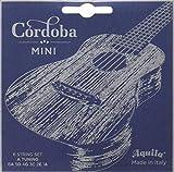 Cordoba Guitars Acoustic Guitar Strings (05279)
