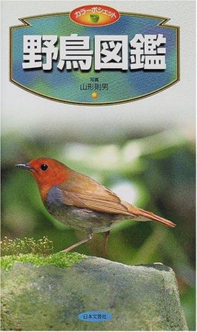 野鳥図鑑 (カラーポシェット)の詳細を見る