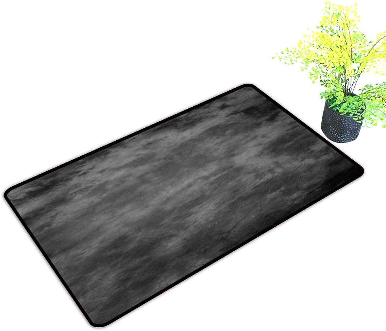 Gmnalahome Super Absorbs Mud Doormat Traditional painte vas or Muslin Fabri Cloth Studio Backdrop No Odor Durable Anti-Slip W39 x H19 INCH