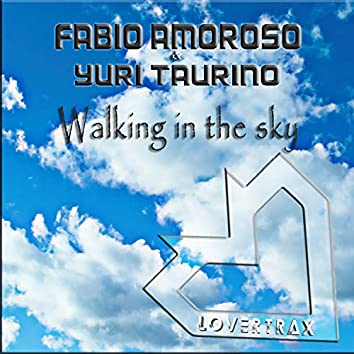 Walking in the Sky (Extended Mix)