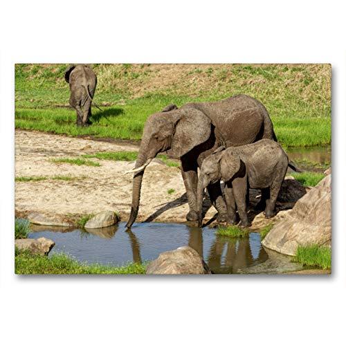 Premium - Lienzo de tela (90 x 60 cm, horizontal, diseño de elefantes en el agujero de agua en Kenia, cuadro sobre bastidor, listo en lienzo) Agujero de agua en Kenia (CALVENDO Natur);CALVENDO Natur