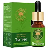 Old Tree Tea Tree Essential Oil for Skin, Hair and Acne Care 15 ml.