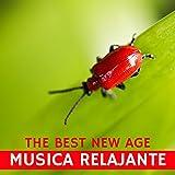 Musica relajante – Musica New Age de fondo con sonidos de la naturaleza, spa, masaje, meditacion, yoga, concentracion,