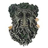 Tree Faces Decor Outdoor Green Man Head Planter Yard Art for Gnomes Garden Decorations Gifts for Gardeners Men