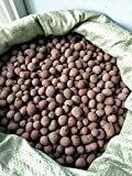 Expanded Clay Pebbles 10 liters - 6.5 Pounds Hydroponic...