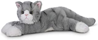 striped kitty