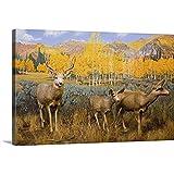 Mule Deer at The Utah Natural History Museum, University of Utah, Salt Lake City, Utah Canvas Wal.