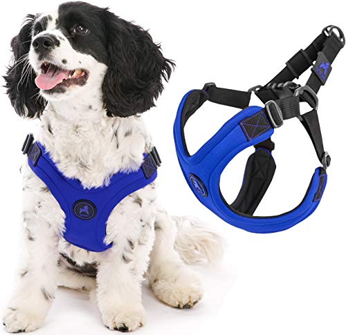 Gooby Dog Harness - Blue, Large - Escape Free Sport Patented Step-in Neoprene Small Dog Harness - Perfect on The Go Four-Point Adjustable Harness for Small Dogs or Cat Harness