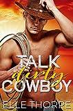 Talk Dirty, Cowboy (Dirty Cowboy Book 1)
