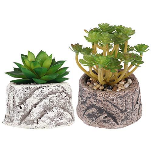 KESYOO 2 Pcs Plantas Suculentas Artificiais Em Vasos Criativo Mini Decoração Suculenta para Simulação Planta Bonsai Ornamento da Paisagem (Pedra de Lótus + Pequeno Lírio D'água)
