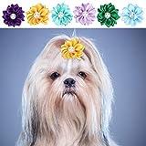 30Pcs Fiocchi di Fiori per Animali da Compagnia, Simpatici peli di Cane Decorazione Daisy ...