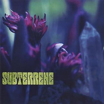 Subterrene
